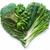 ételek · magas · érték · piros · káposzta · avokádó - stock fotó © unikpix