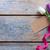 тюльпаны · сирень · белый · Пасху · фон · подарок - Сток-фото © unikpix