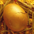 gold nest egg stock photo © unikpix