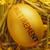 nido · uovo · oro · bene · risparmio - foto d'archivio © unikpix