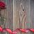 kırmızı · gül · sınır · fotoğraf · güzel · gül · buket - stok fotoğraf © unikpix
