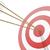 hitting the target stock photo © unkreatives