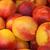 Fresh Nectarines stock photo © unweit