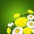 flores · da · primavera · buquê · belo · primavera · folha · fundo - foto stock © user_10003441