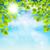 estate · albero · rami · cielo · blu · primavera · legno - foto d'archivio © user_10003441