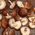 shiitake mushrooms stock photo © user_11056481