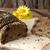 ライ麦 · パン · 酵母 · ごま · ローフ · スライス - ストックフォト © user_11056481