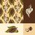 feijão · baunilha · flor · folhas · projeto · chocolate - foto stock © ussr