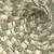 деньги · ловушка · 3D · мыши · 100 - Сток-фото © ustofre9