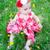 bloem · baby · brunette · vergadering · veld · paardebloemen - stockfoto © vanessavr
