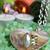 Spa · камней · цветок · природы · красоту - Сток-фото © vanessavr