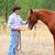 cowboy · fiatal · megérint · ló · orr · szeretet - stock fotó © vanessavr