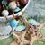 banketbakkerij · kralen · kan · gebruikt · partij · ontwerp - stockfoto © vanessavr