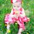 bloem · baby · brunette · vergadering · veld - stockfoto © vanessavr
