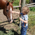 boy and horse stock photo © vanessavr