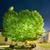 escuro · noite · céu · verde · campo · tempestuoso - foto stock © vapi