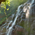 waterfall in the forest stock photo © vapi