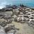 Coast corroded by sea. stock photo © vapi