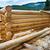 vidék · fából · készült · ház · részletek · égbolt · fa - stock fotó © vapi