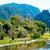 цветок · озеро · парка · пейзаж · путешествия - Сток-фото © vapi