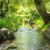 folyam · trópusi · erdő · környezet · napos · tájkép - stock fotó © vapi