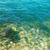 su · dalga · okyanus · sualtı · mavi · güneşli - stok fotoğraf © vapi
