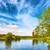 verde · frescos · hierba · cielo · azul · panorama · listo - foto stock © vapi