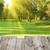 kilátás · fa · asztal · zöld · tavasz · üres · fából · készült - stock fotó © vapi