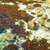 costa · pedras · verde · marinha · água · natureza - foto stock © vapi