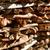 köteg · tűzifa · fa · ház · fa · háttér - stock fotó © vapi