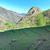 пышный · зеленый · фермы · землю · пейзаж · холмы - Сток-фото © vapi