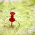 úticél · térkép · lökés · tő · piros · mutat - stock fotó © vapi