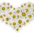 формы · сердца · цветы · изолированный · белый · цветок · сердце - Сток-фото © vavlt