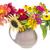 dahlia · bloemen · groene · bush · bloem · natuur - stockfoto © vavlt