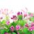 mooie · hout · vaas · tabel · bloem - stockfoto © vavlt