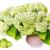 Large lush bouquet of white  hydrangea stock photo © vavlt