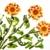brócolis · cenoura · tiro · vagens - foto stock © vavlt