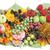 マルメロ · 果物 · キッチン · リンゴ · フルーツ - ストックフォト © vavlt