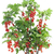 vermelho · groselha · arbusto · lata - foto stock © vavlt