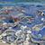 рыбалки · пляж · готовый · новых · рыбы · работу - Сток-фото © vavlt