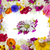 frame · bloemblaadjes · boeket · Rood · witte - stockfoto © vavlt