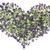 origan · fleurs · fraîches · fleurir · fleur - photo stock © vavlt