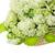 cesta · branco · grande · verde · flores · jardim - foto stock © vavlt