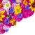 floral postcard stock photo © vavlt