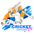 batsman playing cricket championship stock photo © vectomart
