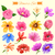 watercolor style colorful flower stock photo © vectomart
