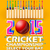 cricket · bat · différent · pays · illustration · sport - photo stock © vectomart