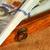 dollar · houten · lade · amerikaanse · papier - stockfoto © Vectorex