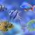 красочный · коралловый · риф · воды · количество · рыбы · небе - Сток-фото © vectorex