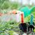ferramentas · imagem · jardinagem · terreno · jardim · verão - foto stock © velkol